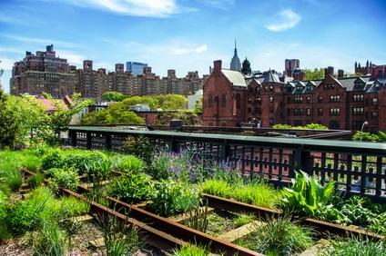 Où cultiver en ville ?
